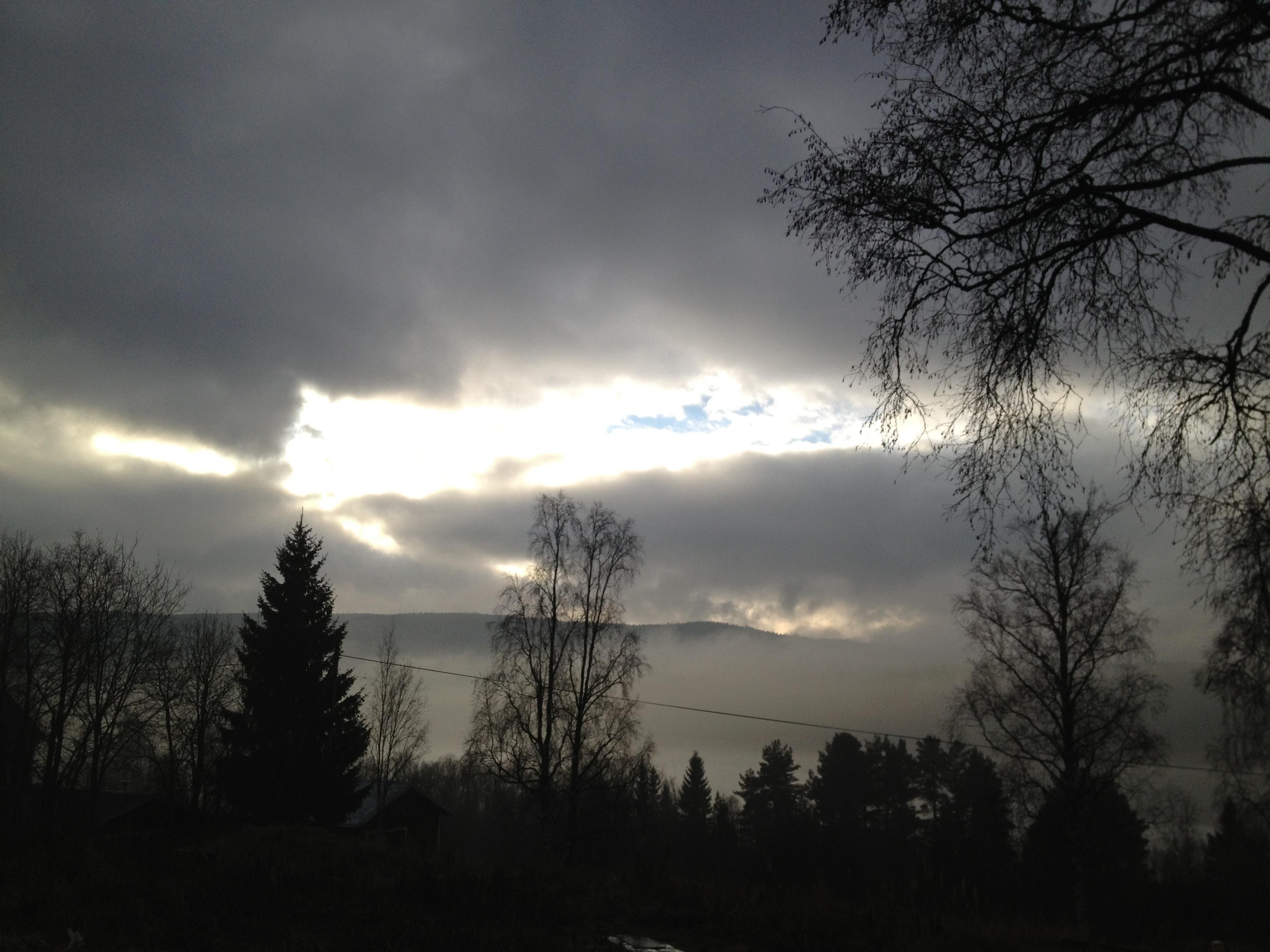 20121103-120326.jpg